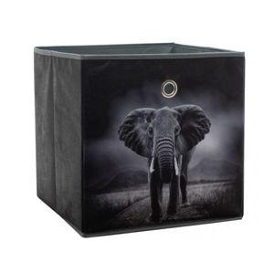 Úložný box Alfa, motiv slon v divočině